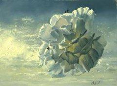 油画花卉教程